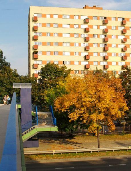 automne20101.jpg