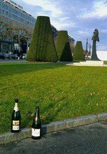Genève 1er janvier (suite) dans Le genre de mes Photos geneve-6-210x300