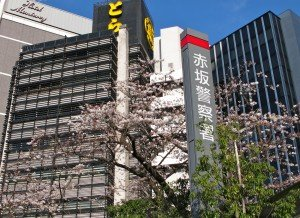 Japon printemps G