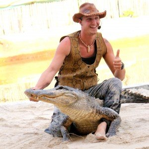 Alligator farm 2C show