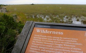 Everglades info board Wilderness