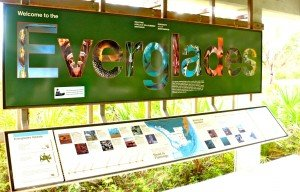 Everglades panneau