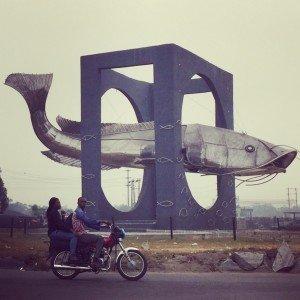 Poisson et moto - Instagram